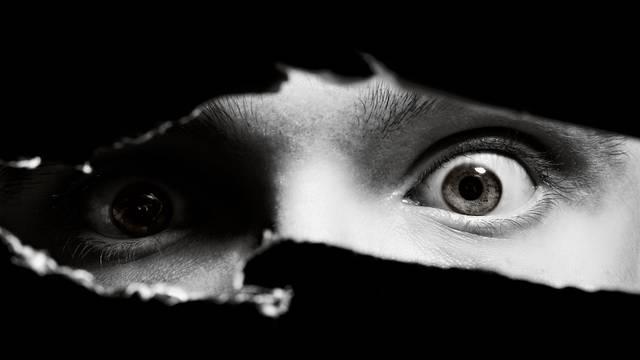 Volite horore i kada vas drugi plaše? Evo zašto je to tako...