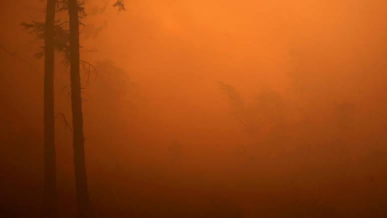 Pakao u Rusiji: Gori više od 250 šumskih požara, uništeno preko 1,3 milijuna hektara zemlje