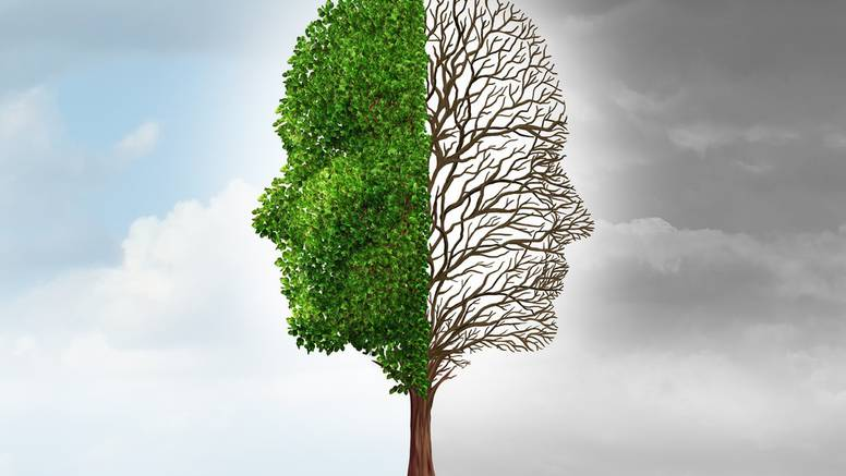 Odgovorite na 10 pitanja: Otkrit ćete koja strana mozga vam je dominantnija, a to vas određuje