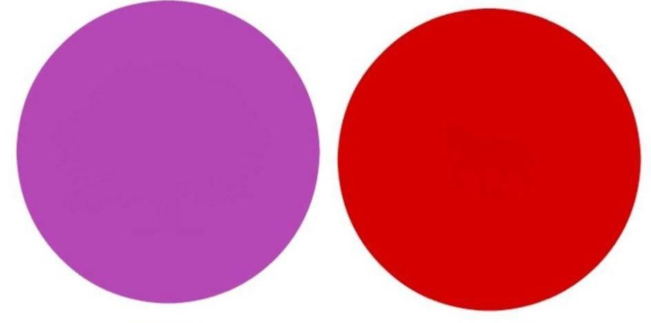Pronađite skrivene predmete u krugovima: Možete li ih vidjeti?
