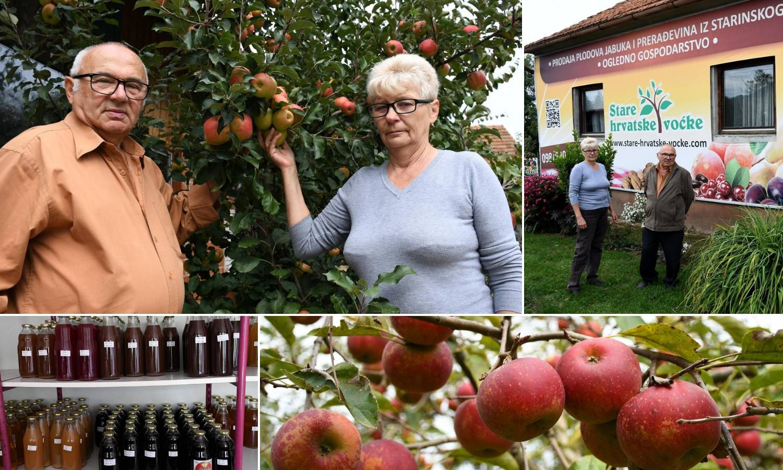 Čuvari hrvatskih jabuka: Imaju 846 starih sorti i 10-ak novih