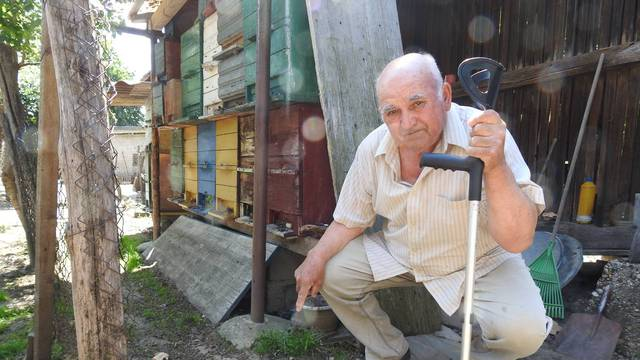 Pčelarima kojima su ubili pčele pomaže EU, ali oni su neutješni