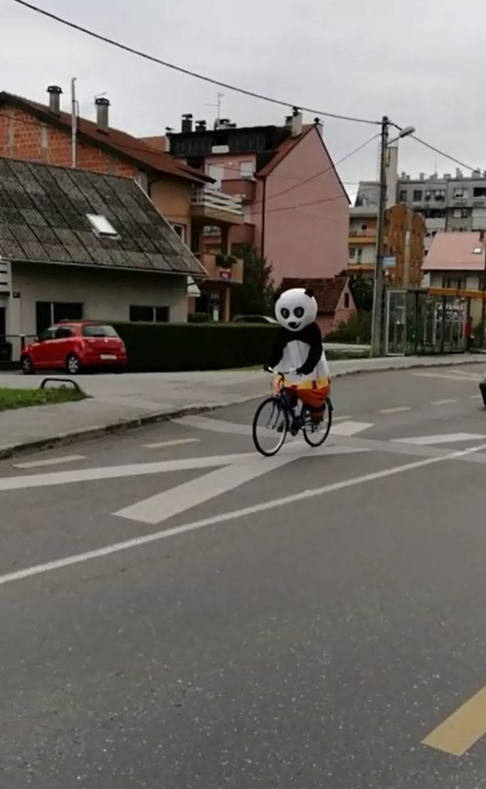 'Vozim se ja tako Vrapčem, a ispred mene panda na biciklu'
