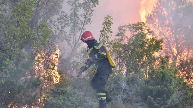 Podignuta optužnica: U okolici Šibenika izazvala je 7 požara