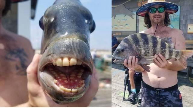 Nije fotomontaža: Ulovio ribu demona s 'ljudskim' zubima