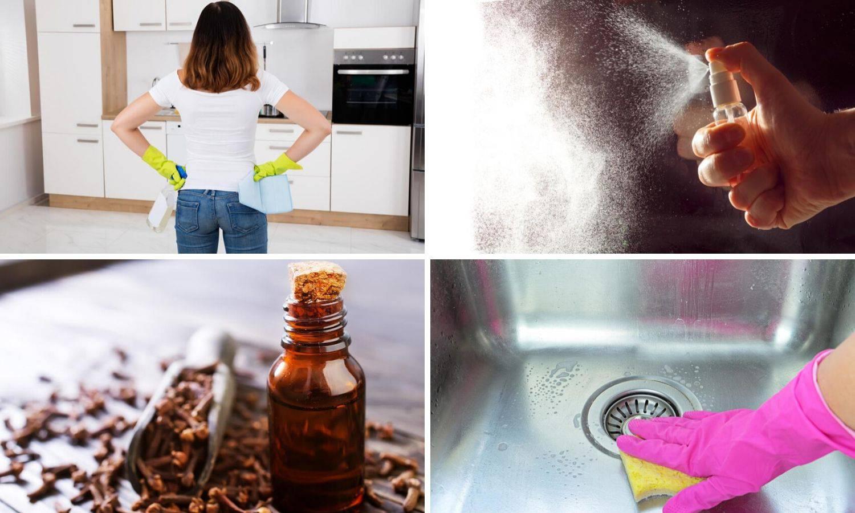Veliki vodič za dezinfekciju kod kuće: Sredstva napravite sami