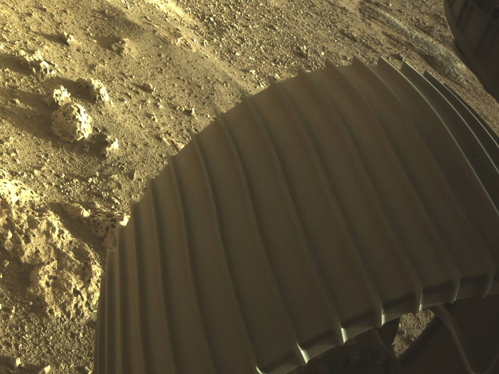 One of the six wheels aboard NASA's Perseverance Mars rover is seen in a high-resolution, color image