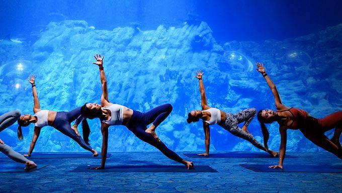 Budi jedno s ribama: Osmislili su vježbanje joge u akvariju