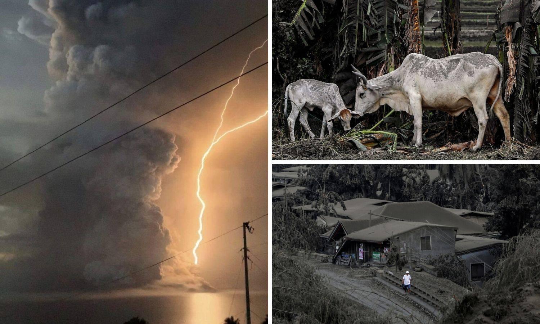 Vulkan izbacuje lavu, pepeo prekrio nezaštićenu stoku