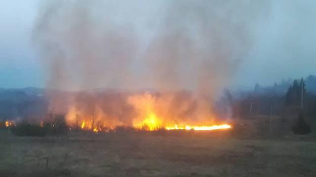 Požar kod Bilja u Baranji: Gori područje na kojem ima mina