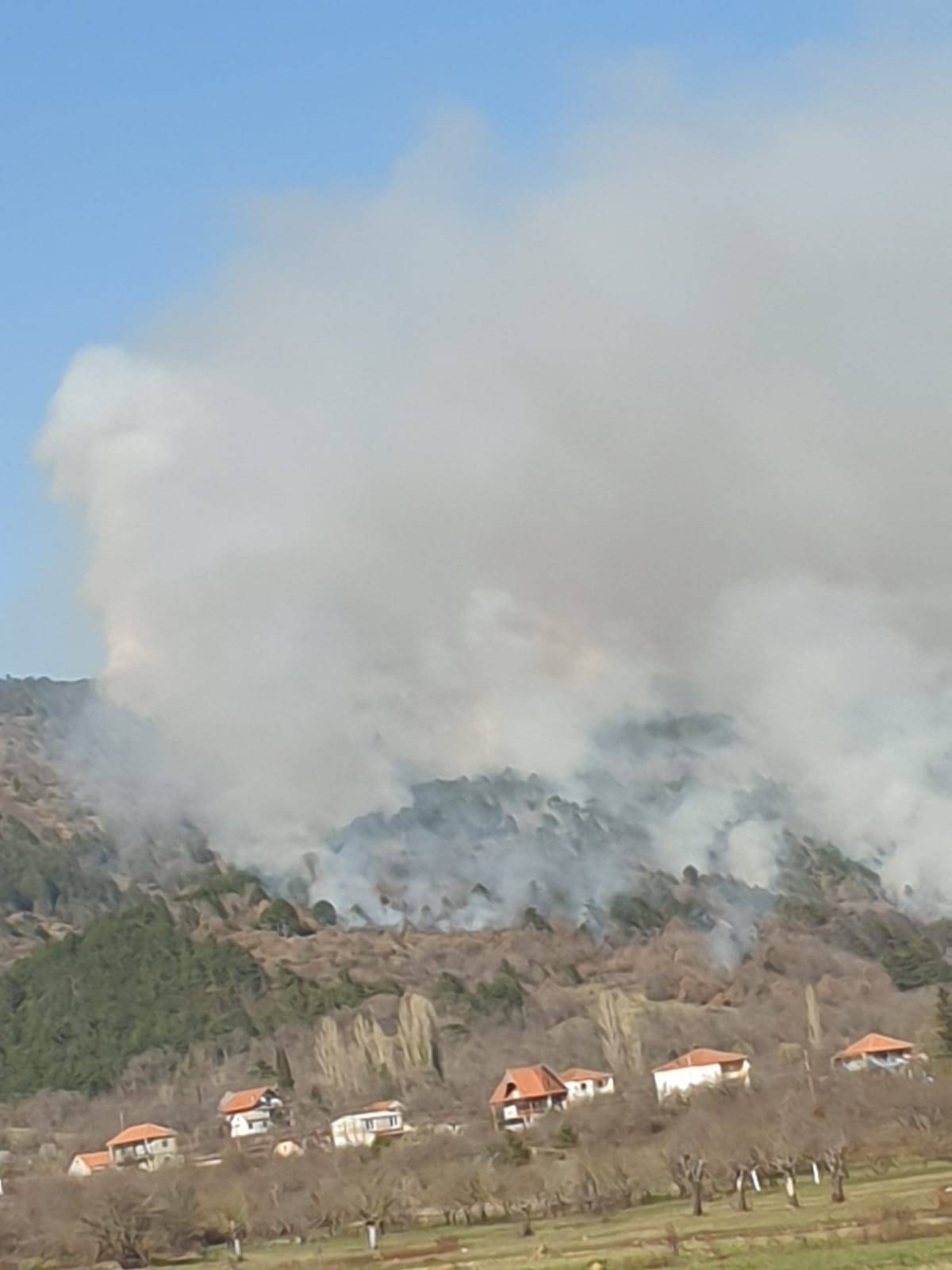 Sinj: Planula je gusta borova šuma, dim se proširio posvuda