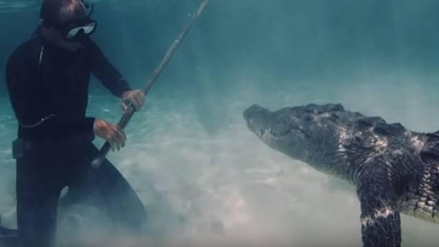 Opasnost u vodi: 'Oči u oči' s krokodilom, legao ispod njega!