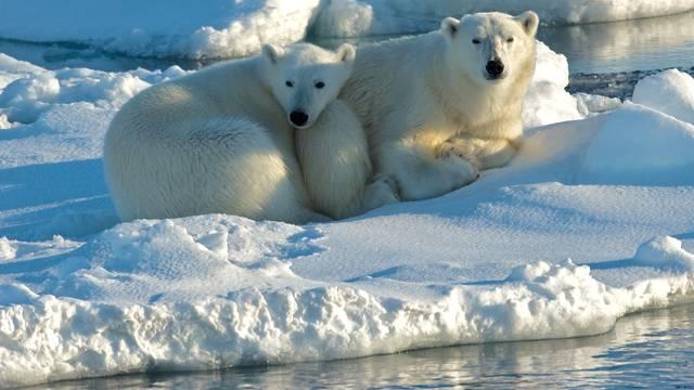 Na Arktiku će se led potpuno otopiti već do 2035. godine