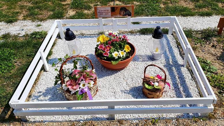 Dostojanstveno zbrinuli više od 300 uginulih kućnih ljubimaca