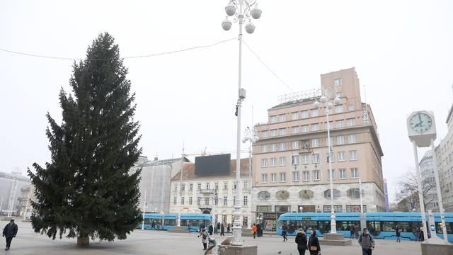 Zagreb: Na glavnom gradskom Trgu postavljen bor