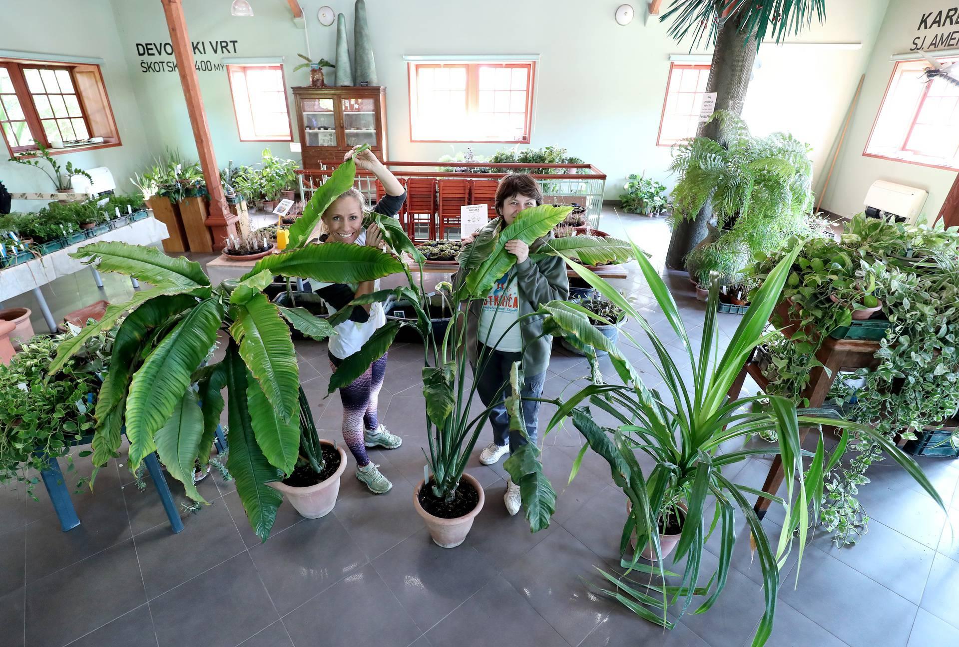 Botanički vrt u Zagrebu najavio je povoljnu rasprodaju biljaka