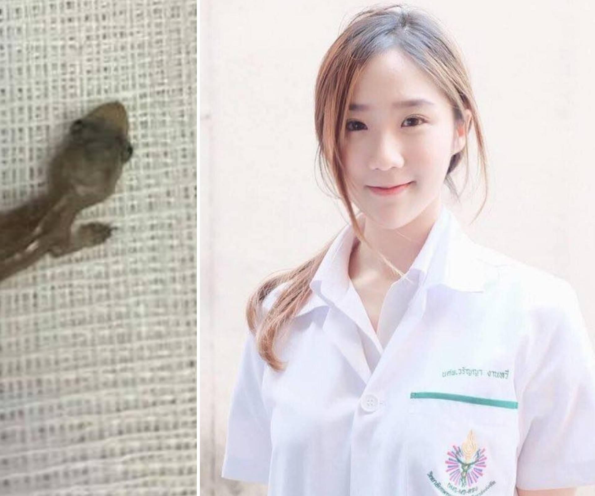 Nakon dva dana boli otkrili su da joj u uhu živi mali macaklin