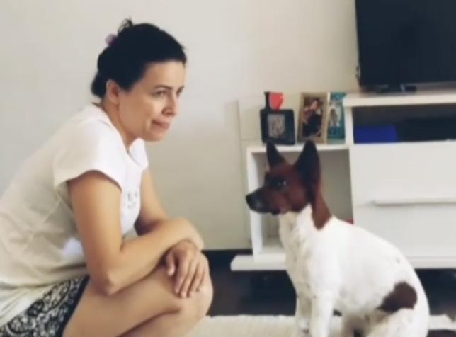 Zbog problema sa sluhom svoje pse je naučila znakovni jezik...
