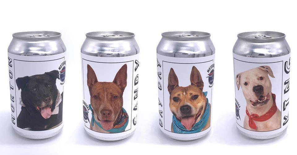 Na limenci pive prepoznala psa kojeg je izgubila prije tri godine