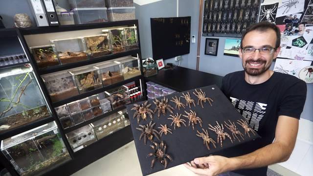 Marko je kralj tarantula: Ima ih 150, a pokrenuo je i posao...