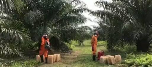 Radnici ustvrdili da su zbog pesticida postali impotentni