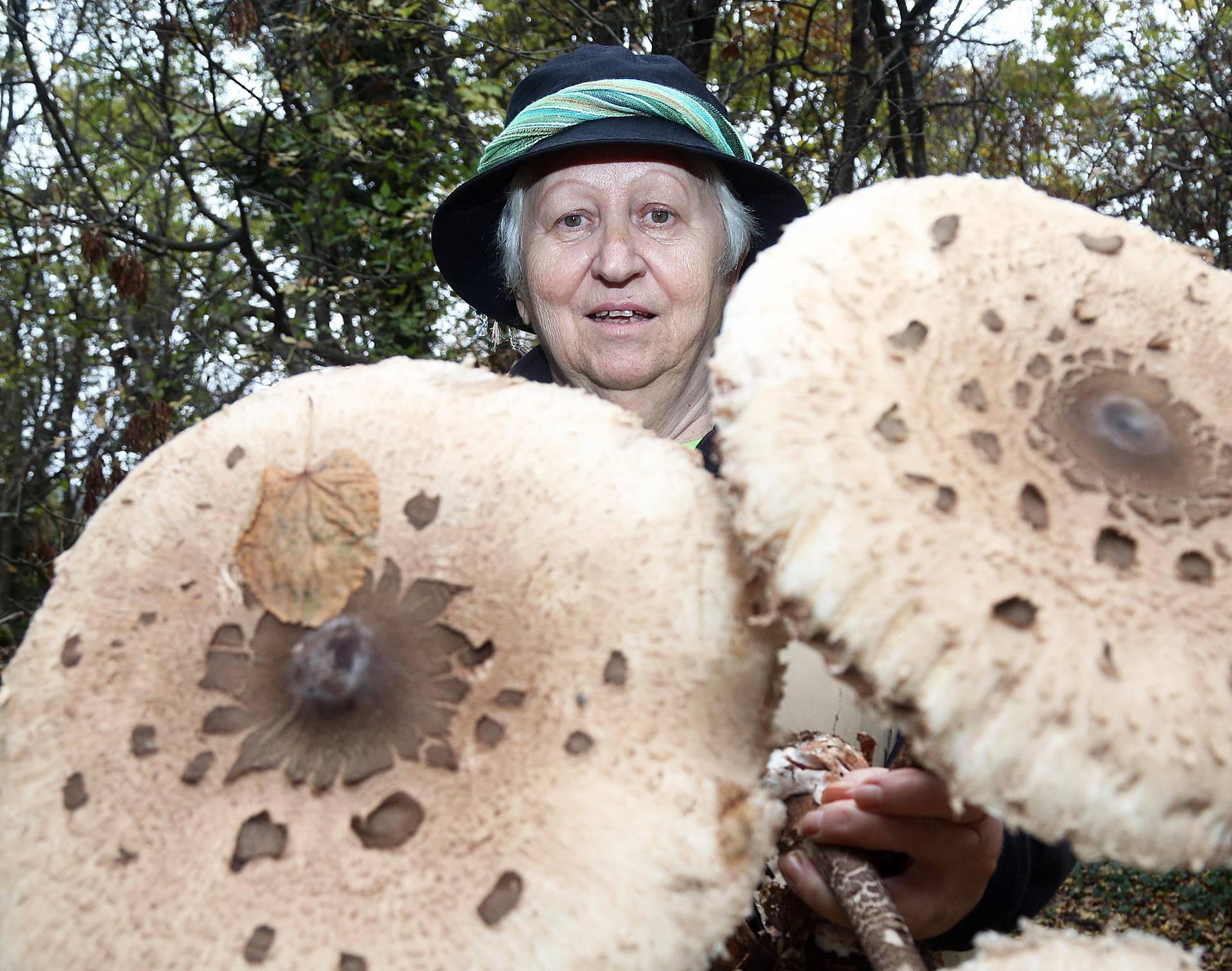 'Gljive mogu biti kobne. Spasila sam već najmanje 40 života... '