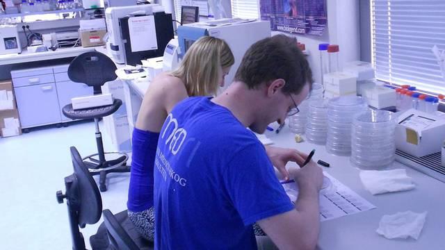 Sve bliže lijeku za rak: Hrvati su otkrili novi virusni protein