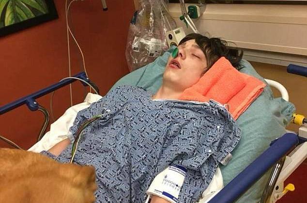 Oduzeli im sina jer su ga liječili 'travom': 'Ali, bilo mu je bolje!'
