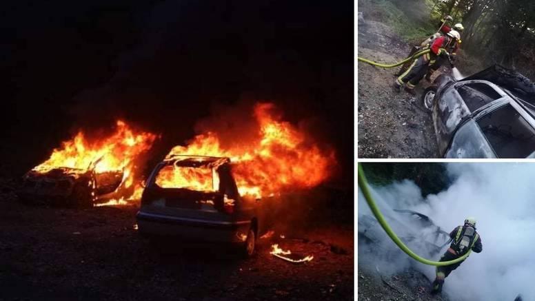 Bizarna akcija vatrogasaca kod Ludbrega: Zapalio automobile kako bi iz njih istjerao žohare