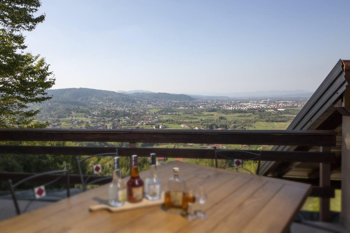 Ideja za savršen izlet: Posjetite Samoborsku vinsku cestu i Samoborski muzej