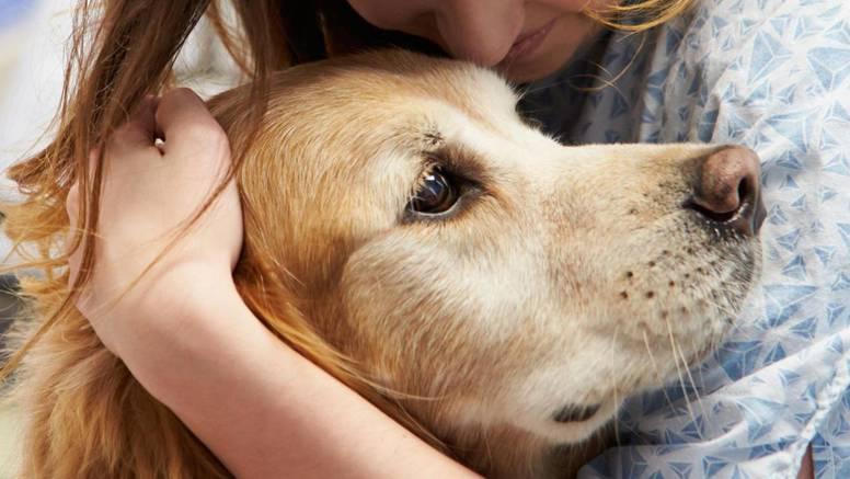 Ljubimci rade nešto tužno pred smrt - ne ostavljajte ih same