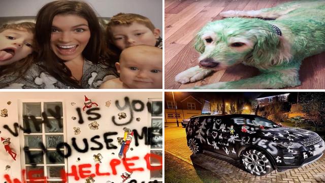 Mama poludjela? Psa obojala u zeleno, sprejem išarala zid i auto,  omotala u papir kuhinju