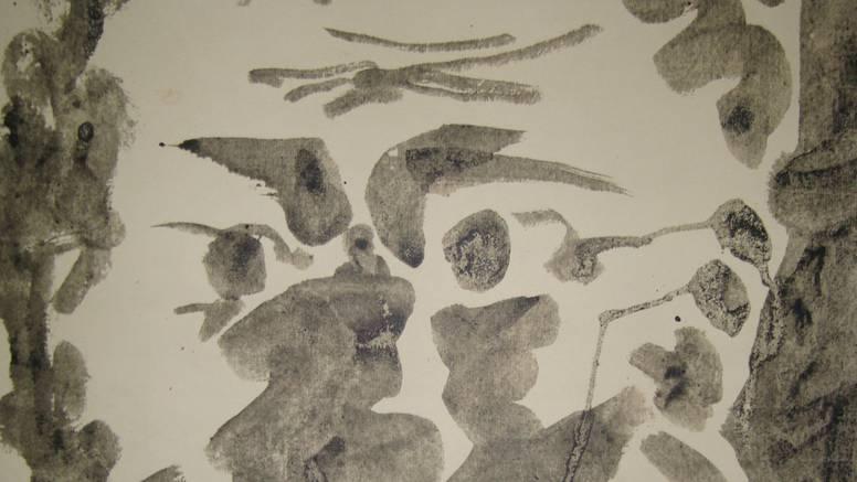 Struka je potvrdila: Picasso u Kozarskoj Dubici je original
