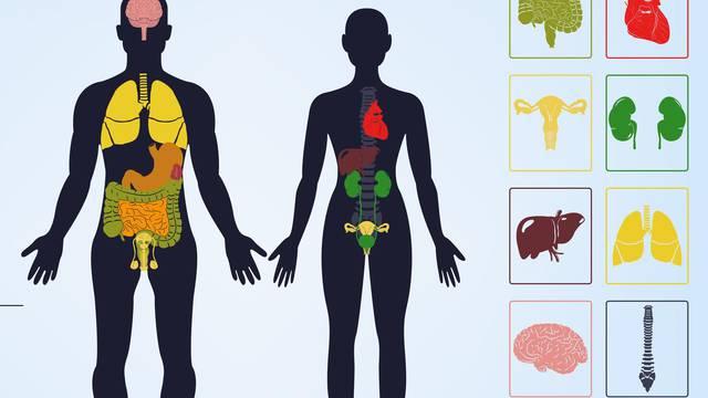Posljedice ljutnje, straha, sreće, brige, zamišljenosti, tuge i šoka - kako djeluju na organe u tijelu