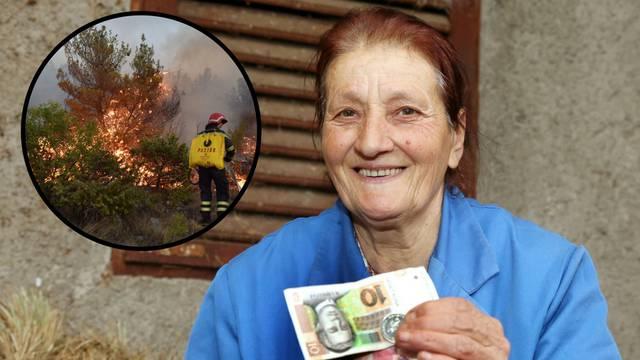 Sve nestalo u požaru: Za 1500 čokota vinove loze dobila 55 kn