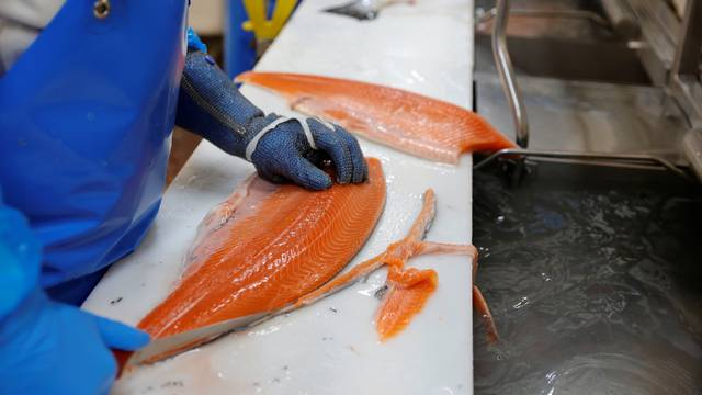 Brexit upends seamless supply chain for France's fish merchants