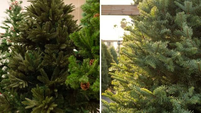Umjetno ili pravo drvce? Pravo je uvijek bolji izbor za okoliš