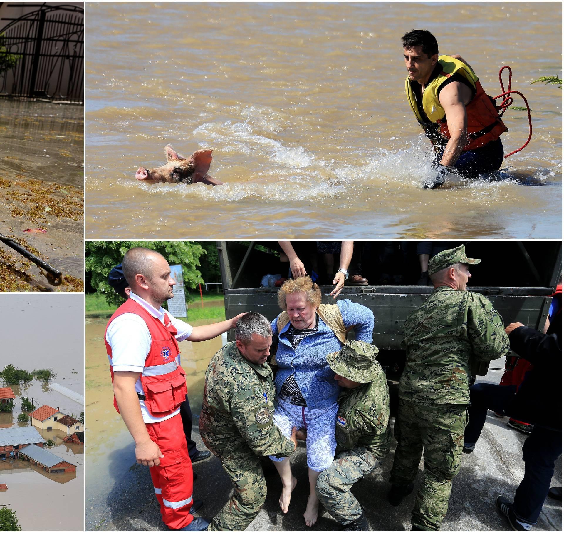 Potresi, poplave, imali smo sve: Dani katastrofe i kaosa u Gunji