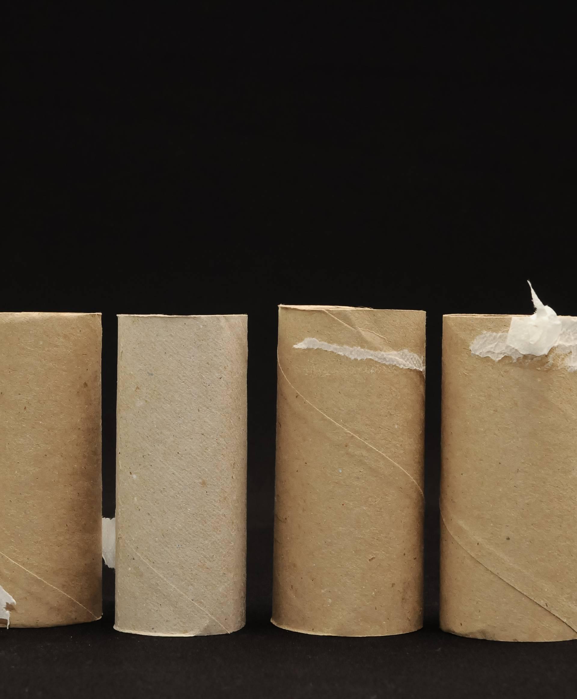 Što napraviti, a što ne ako ostanemo bez toaletnog papira