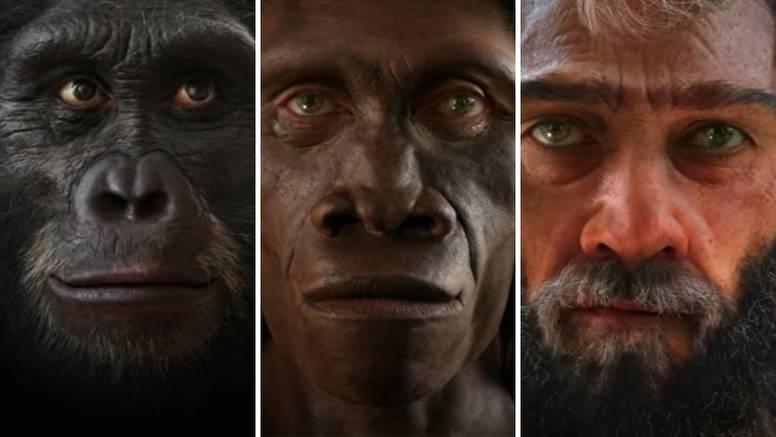 Izgled ljudskog lica od nastanka svijeta do danas - koža je postajala sve mekša i nježnija