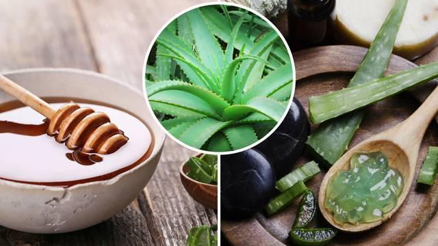 Aloe vera liječi kožne bolesti i umiruje želučane probleme