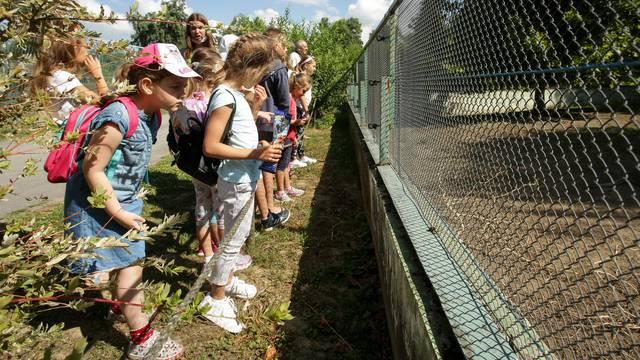 Mali Osječani praznike provode u Zoološkom vrtu i uživaju učeći o zmijama, devama i ribama