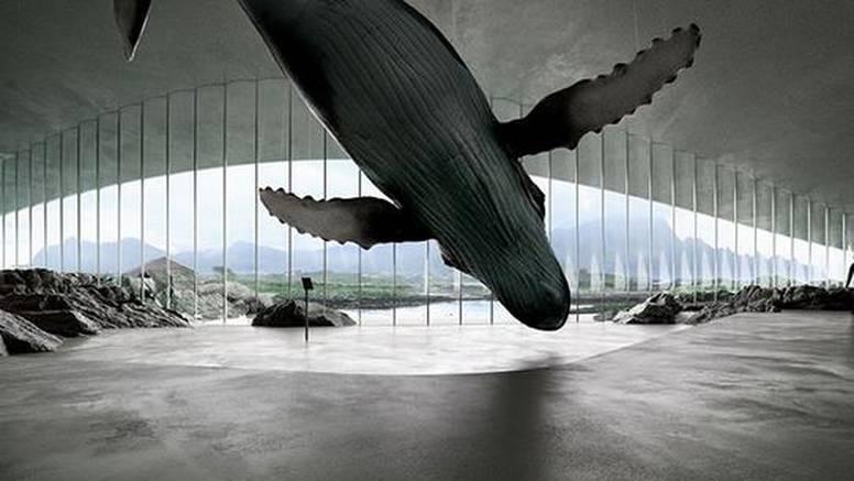 Norveška otvara muzej 'Kit': Bit će super mjesto za promatranje