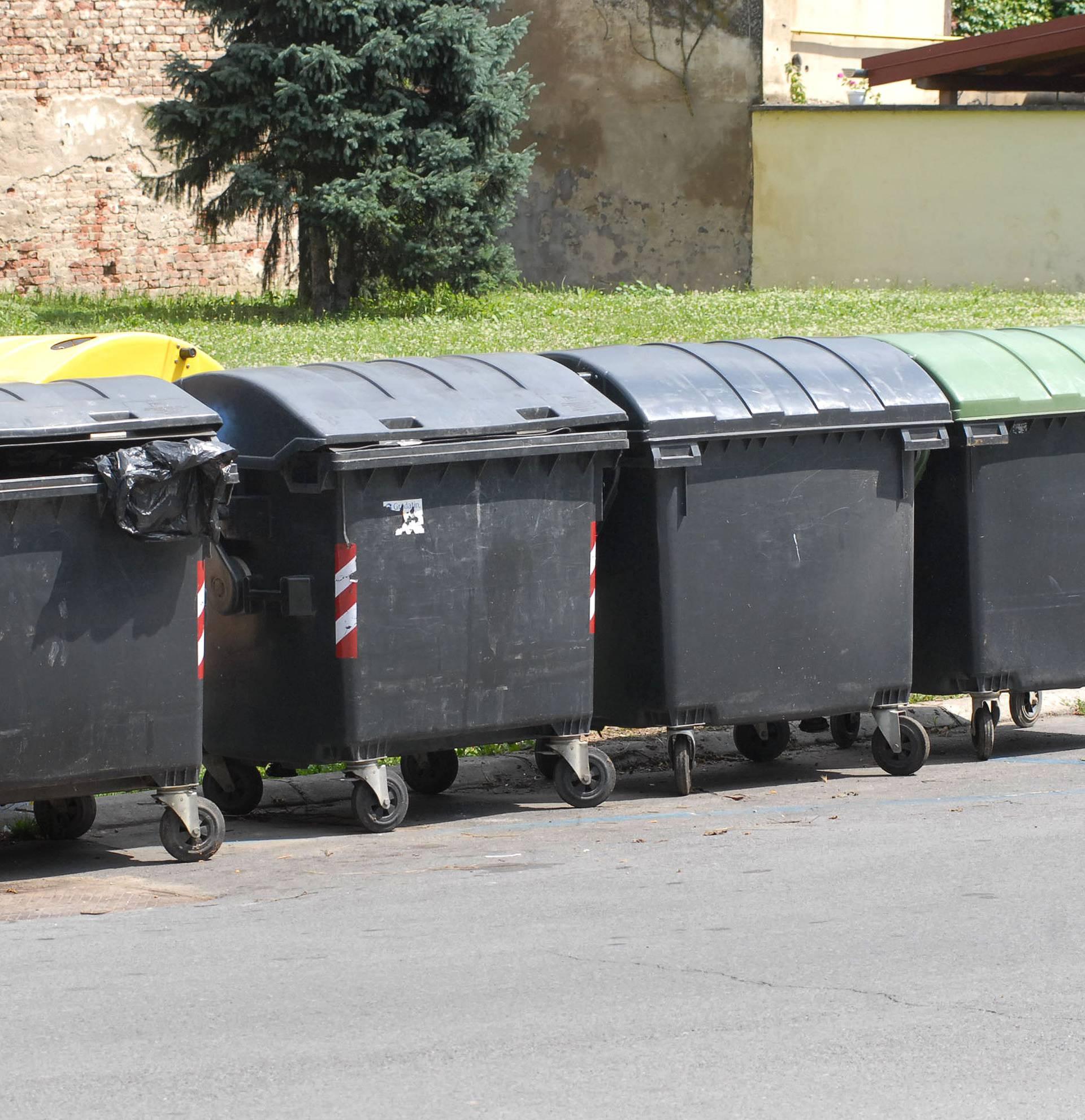 Završile na sudu: Studentice su 'krale' hranu iz kontejnera