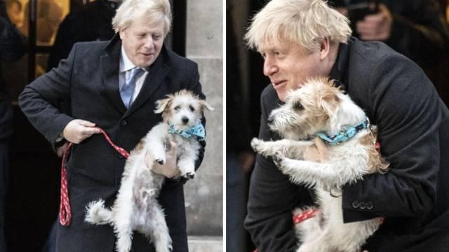 I Johnsonov pas imao koronu?