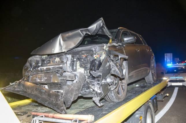 Autom naletio na konje lutalice kod A1: 'Moglo je biti i mrtvih'