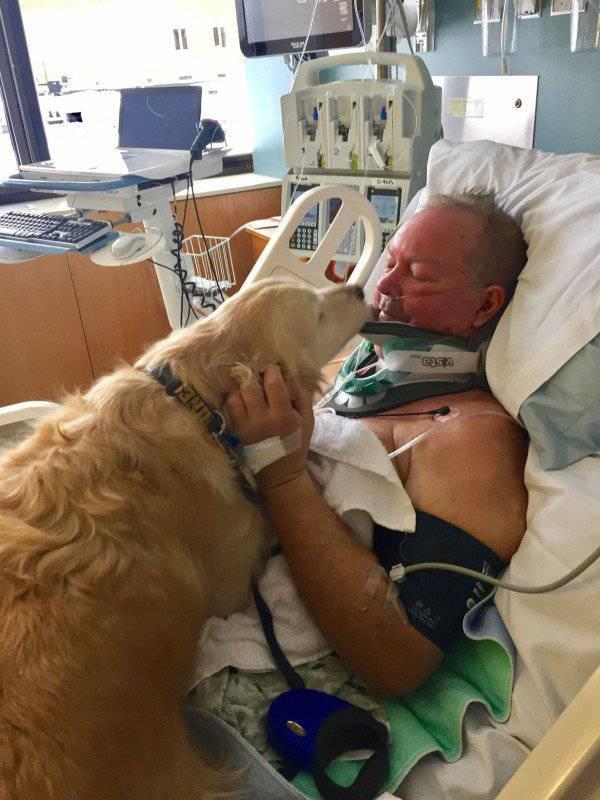 Pao je i slomio vrat: Pas ga je grijao i držao budnim 20 sati
