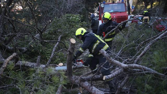 Split: Nakon olujnih udara bure najviše stradala stabla i drveni električni stupovi