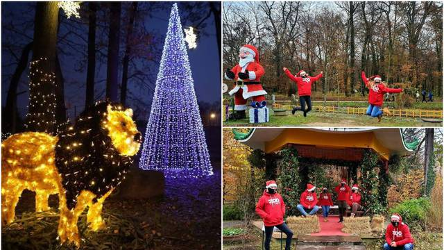 Polarni advent u 'Divljem srcu grada' - zagrebačkom ZOO vrtu