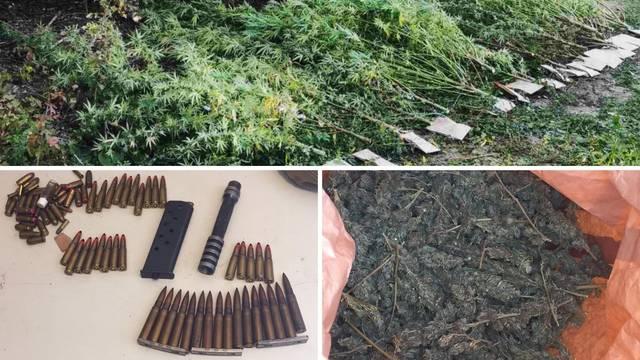 VIDEO U Srbiji pala četvorica s eksplozivima, streljivom i preko 140 kilograma trave i kokaina